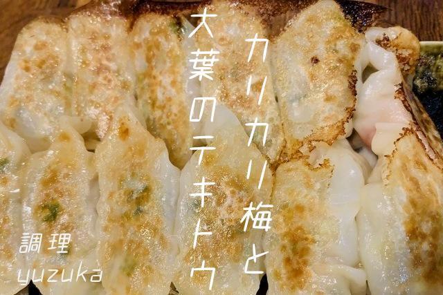 「カリカリ梅と大葉のテキトウ餃子」のレシピと作り方。毎日の献立に悩むあなたへ